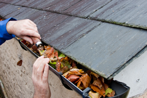 Surrey Handyman Gutter Clearing